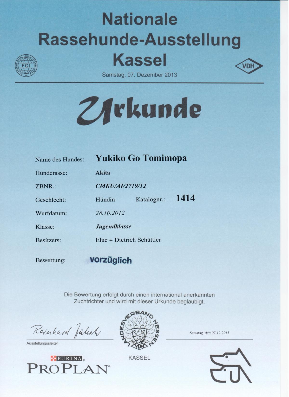 Kassel-Dezember-2013537500bc8c003